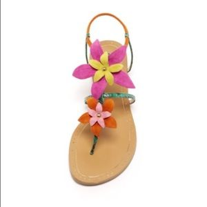 NWT/ NIB PELLE MODA Sandals